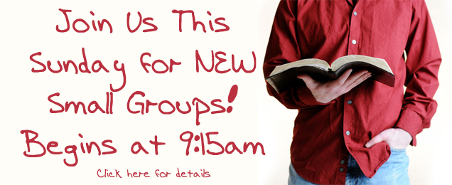Sunday Small Groups - Adults